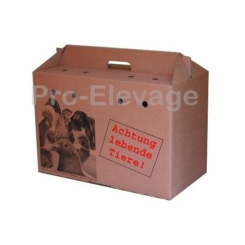 Caisse en Carton pour voyage, Transport, Expédition d'animaux