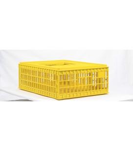 Caisse de transport pour volaille