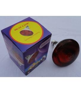 Ampoule infrarouge 100 Watt (verre rouge)