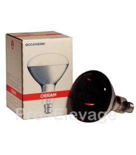 Ampoule Chauffante Infra-rouge 250 W