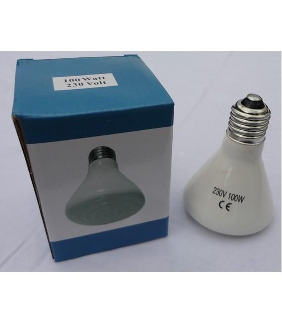 Elstein Ampoule chauffante 100 Watt