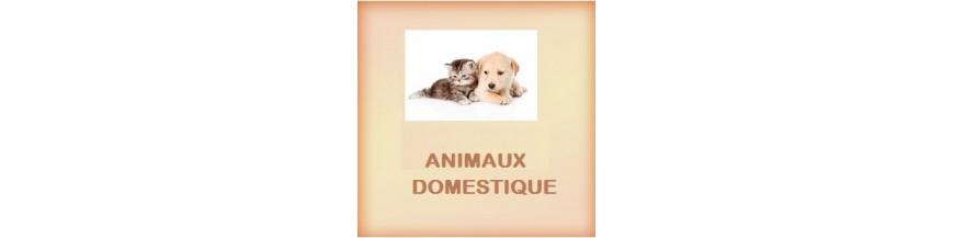 Souvent Produits Animaux Domestiques | Produits Animaux De Compagnie - pro  NE34
