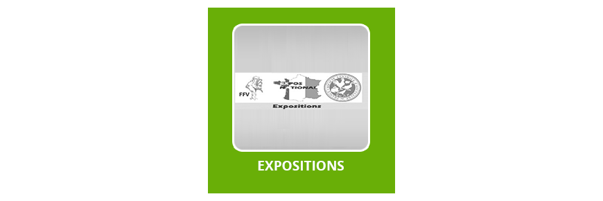 Expositions  FFV 2018