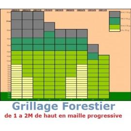 Grillage Forestier