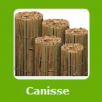 CANISSE