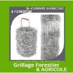 GRILLAGE FORESTIÈRES / MOUTONS